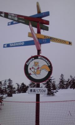 2010年初滑り