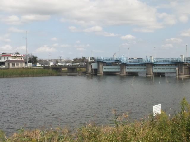曙橋、フィッシングセンター