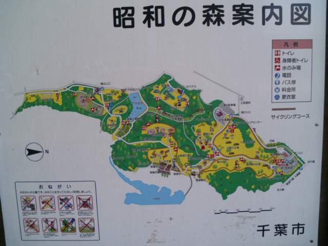 昭和の森自然公園